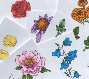 Copic Flowers with Dr. Sue @ Everything Scrapbook & Stamps