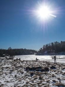 Stockholm Nacka Nature Reserve Mar 2017-20
