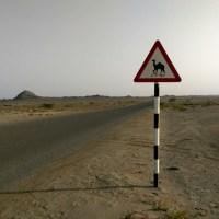 Geheimtipp Masirah Island: Eine einsame Nacht auf der omanischen Wüsteninsel