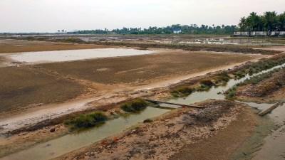 Salzfelder in Kampot