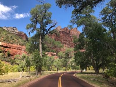Zion National Park auf einem USA Roadtrip