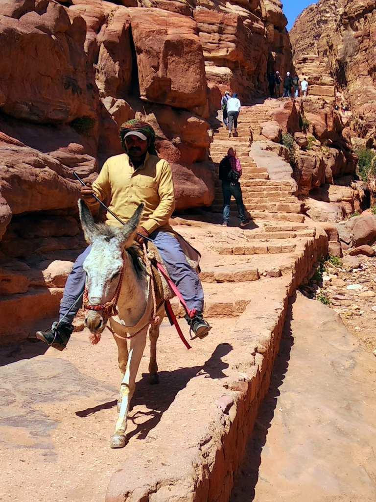 Eselreiter in Petra, Jordanien