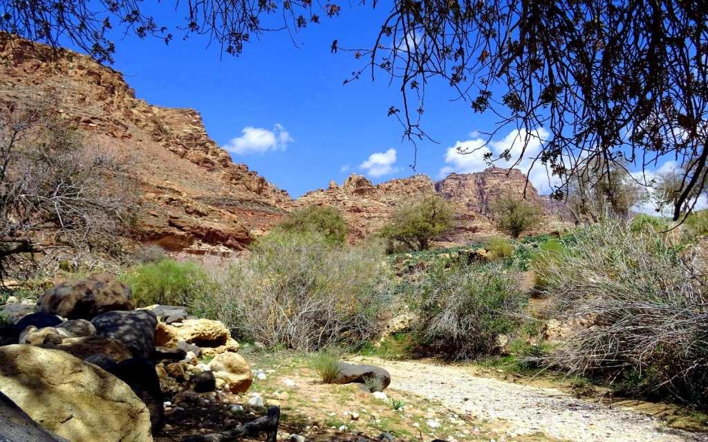 Natur pur im Wadi Dana