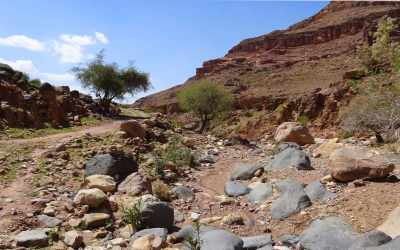Ausgetrocknetes-Flussbett-im-Wadi-Dana