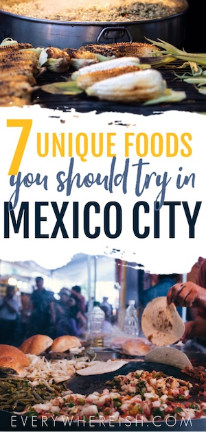 Backpacking Mexico City Travel Tips: 7 Unique Foods to try in Mexico City