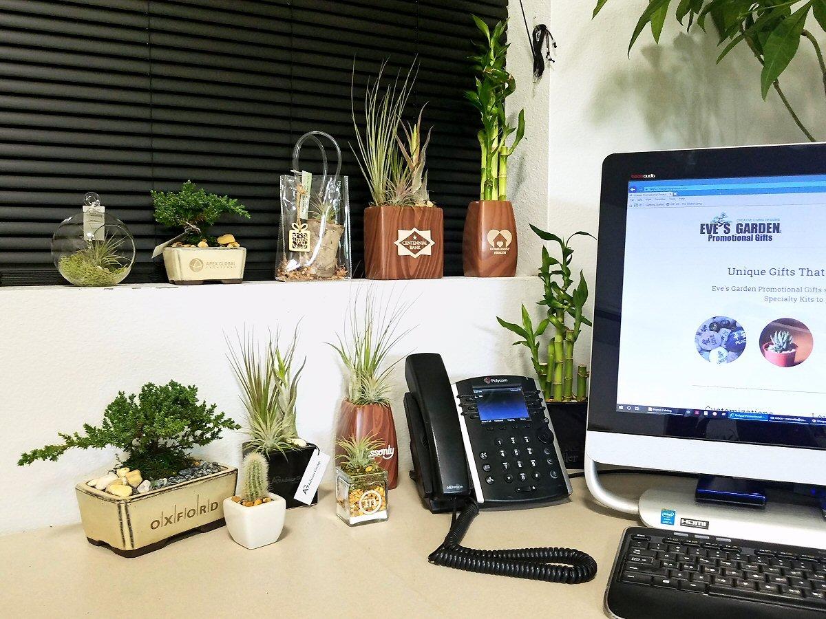 Nannette_Office_Promo_Catalog_Cover_021919_c_1200