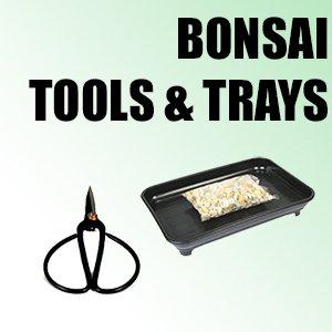 Bonsai Tools & Trays