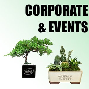 Corporate & Events
