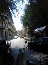 vinneve photo, street1