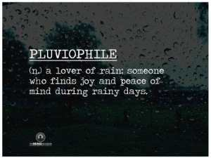 Text defines pluvophile...a lover of rain.