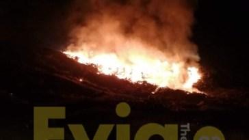 Χαλκίδα - Φωτιά στην Χαραυγή