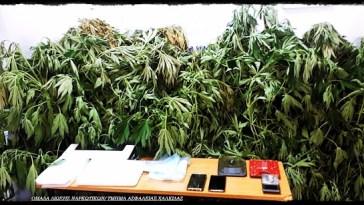 Αλιβέρι Ευβοίας: Εντοπισμός της Δίωξης Ναρκωτικών
