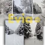 Στενή Ευβοίας Χιόνια