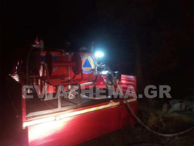 """Πυρκαγιά σημειώθηκε σήμερα λίγο μετά τις 6.30 το απόγευμα στην περιοχή """"Πλακάκια"""" Ερέτριας"""