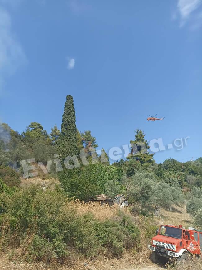 Εύβοια: Φωτιά καίει δασική έκταση στην Λίμνη