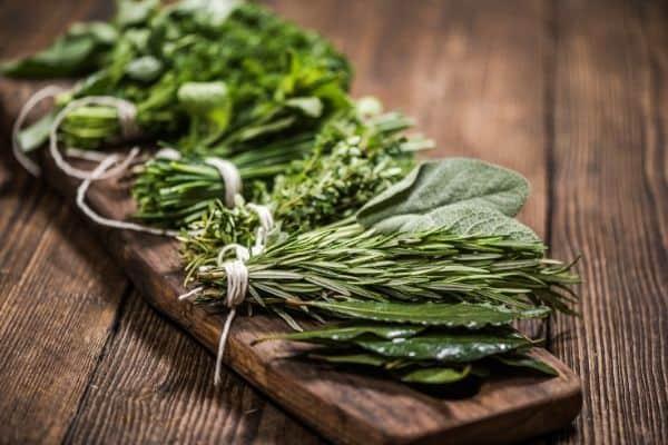 herbs on wooden board