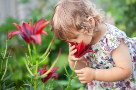 teaching mindfulness to toddlers - toddler sniffing a flower