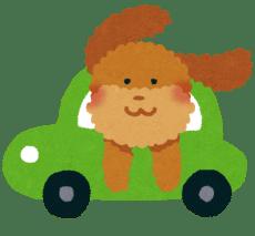 dog_drive_car[1]