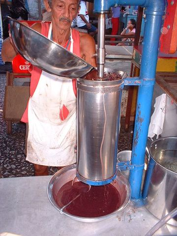 Man extracting juice from acai berries