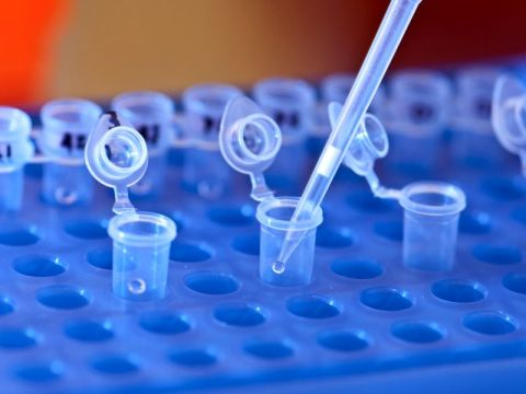Pipette filling test tubes