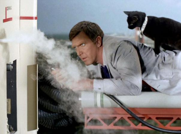 I'm telling you...he's a timelord. He even has a companion, his cat!