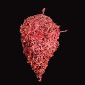 an image of a giant meat sculpture