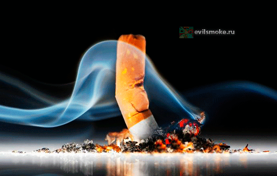 foto-s'est-sigaretyi-zaklyuchenie