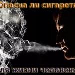 Опасна ли сигарета для жизни человека?
