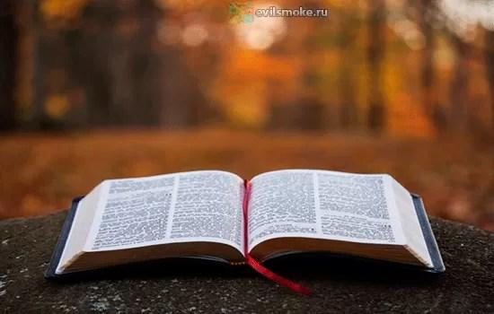 foto-bibliya-o-kurenii-zaklyuchenie