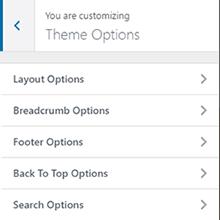 BizPlus: Theme Option
