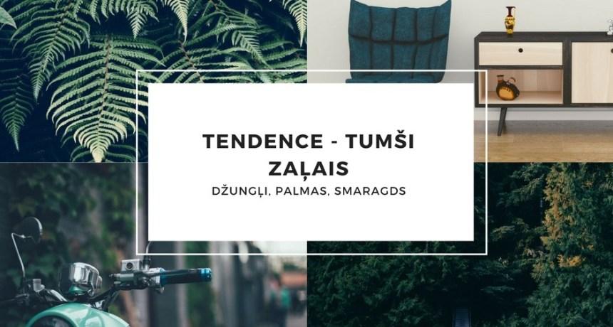 tendence-tumc5a1i-zac4bcais.jpg