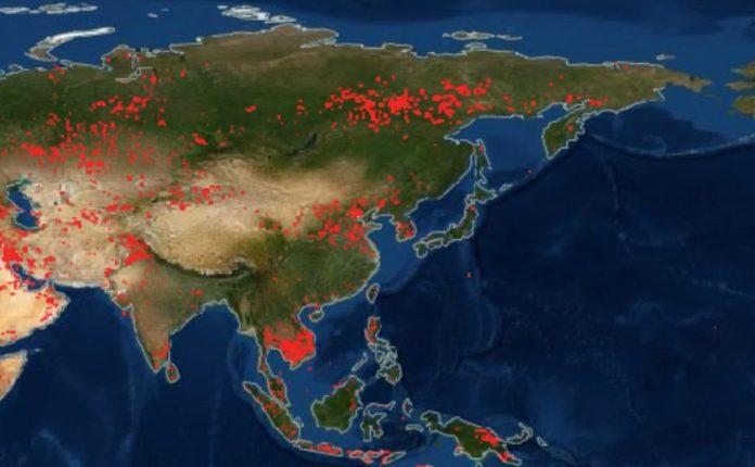 пожары по всему миру, пожары в Азии и крайнем Востоке, карта пожаров по всему миру, карты пожаров по всему миру