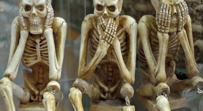 Обнаружили источник молодости, препятствующий старению костей