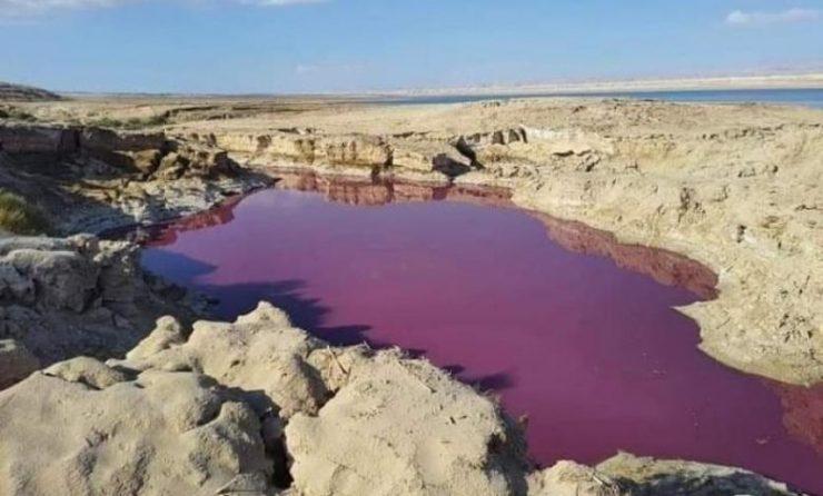 вода мертвого моря становится красной, вода мертвого моря становится красной иордания, вода мертвого моря становится красной на фотографиях, вода мертвого моря становится красной видео, вода мертвого моря становится красной сентябрь 2021 г.