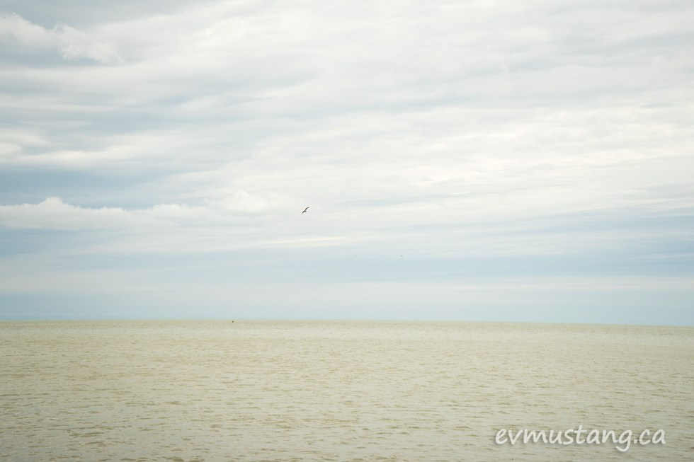 image of port burwell beach looking out over the water with a single seagull flying toward shore