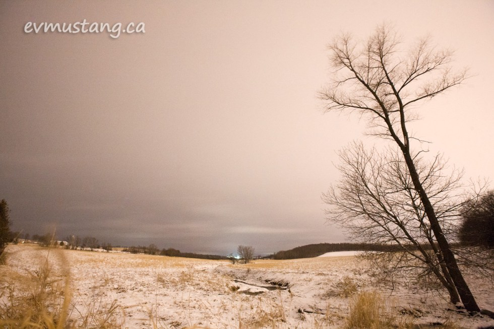 image of snow dusting a rolling field at night with a tall tree in the foregroudn and lights in the distance