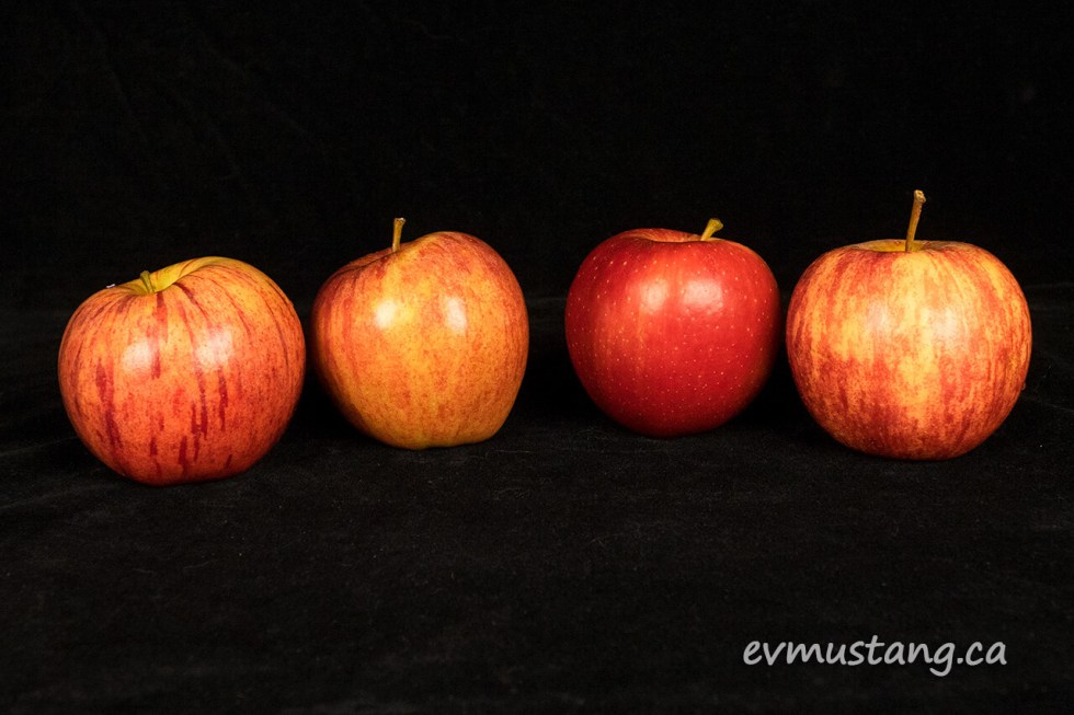 image of four royal gala apples with different skin patterns