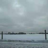 Winter Through The Wire