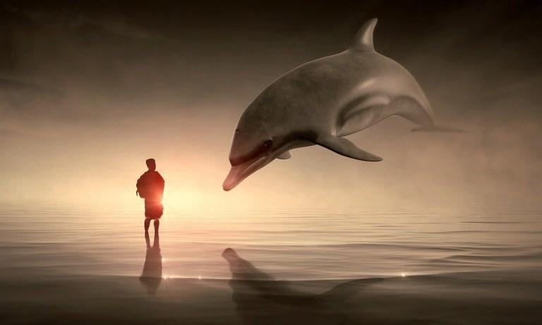 El encuentro del ser. La imagen idealizada (V)