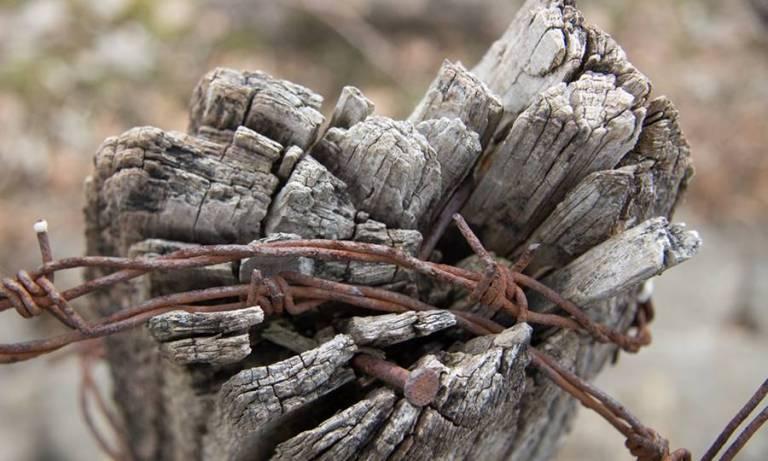 Miedo al castigo – La imagen idealizada (II)