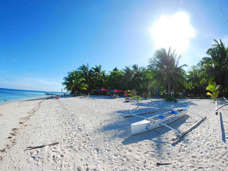 malapascua island beach evolution diving resort