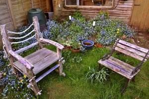 Chairs in backyard