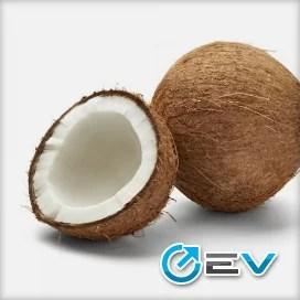 Essência TPA - Coconut