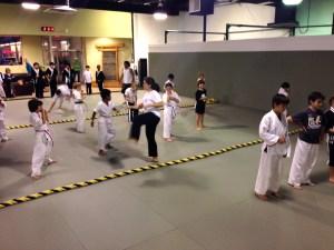 Martial Arts Tricking class 2 – Evolve All