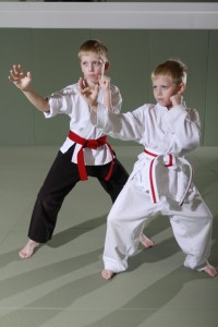 Brothers – Evolve All Martial Arts Training Center