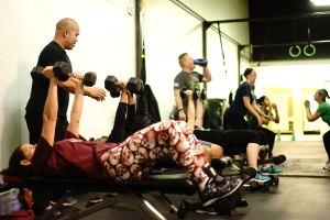 Gym Basics 2 web ready - gym-basics-evolveall
