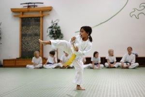 Sophia  - EvolveAll youth martial arts children falls church arlington va