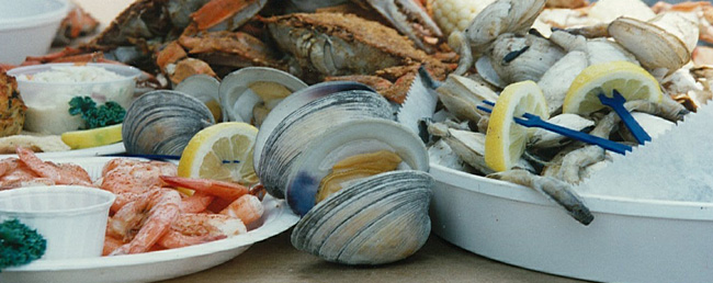Chesapeake Bay Seafood: What Is Safe to Eat?