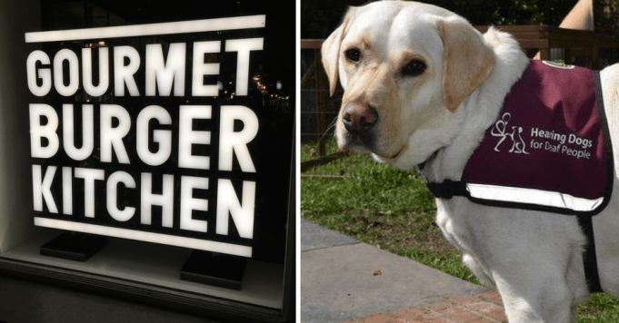 Gourmet Burger Kitchen facing boycott after 'throwing out' deaf couple for having an assistance dog