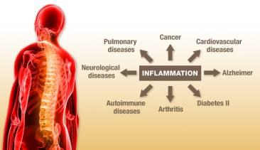 inflammation-to-disease.jpg